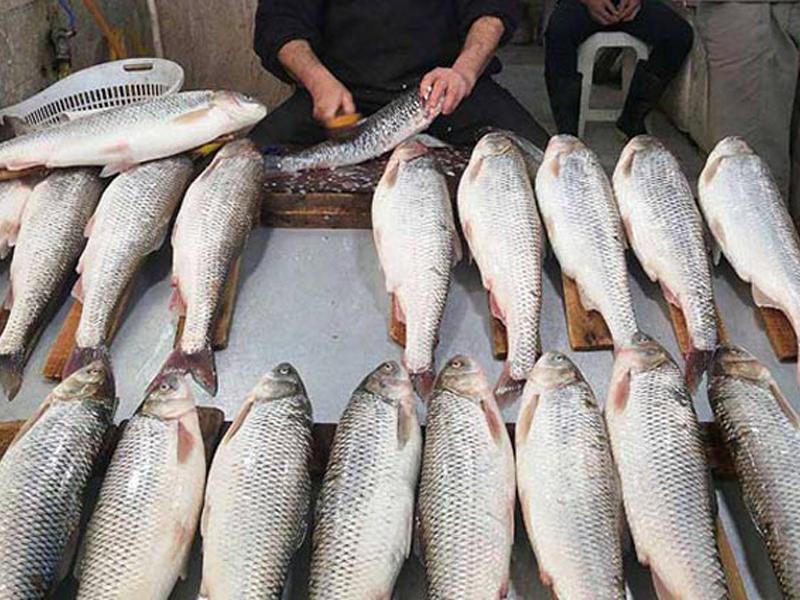 معرفی مراکز خرید رامسر - بازار ماهی فروشان
